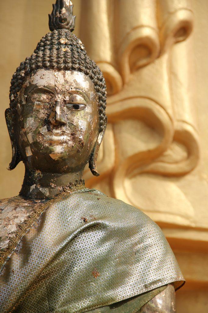 """Mindfulfobia: """"Non è Dharma!"""""""
